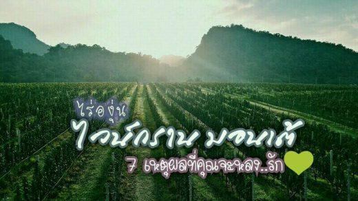 ไร่องุ่น ไวน์กราน-มอนเต้